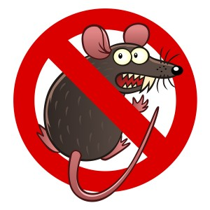 Prevent Rodents and Rodent Damage for your car in Klamath Falls, OR